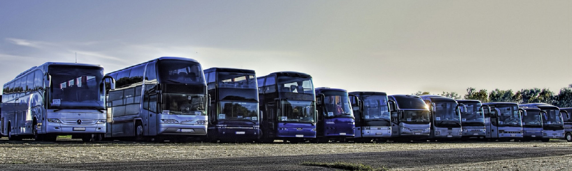 Our Fleet of VIP Buses